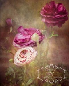 trois-fleurs